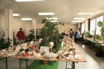 Exposition mycologique d'Epernay